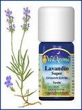 Biologische ethersche Lavendin olie
