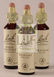 Bach Agrimony / agrimonie