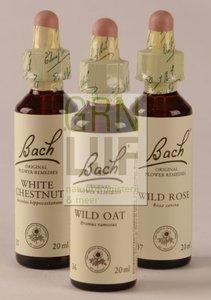 Bach Pine / den