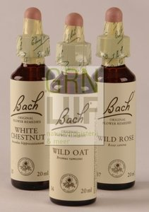 Bach Olive / olijf