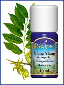 Biologische Ylang Ylang complete etherische olie VedAroma