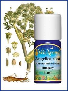 Angelica archangelica BIO etherische olie VedAroma