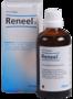 Heel-Reneel-H
