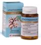 Arkocaps-Lithothamnium